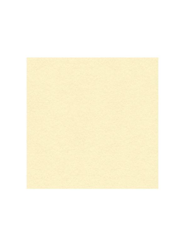 Vanilla Cream Solid Core Cardstock